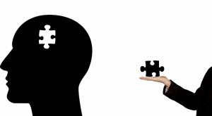 अभिप्रेरणा के सिद्धांत